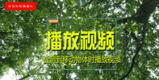 QPlayerHV摄像头监控软件