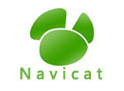 Navicat出现Got a packet bigger than 'max_allowed_packet' bytes报错解决
