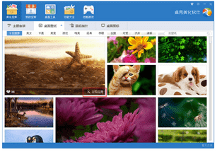 桌秀美化软件软件截图