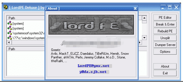 LordPE Deluxe 64位下载