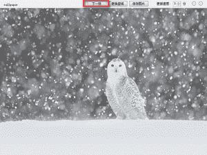 wallpaper桌面壁纸软件下载 v1.0中文破解版