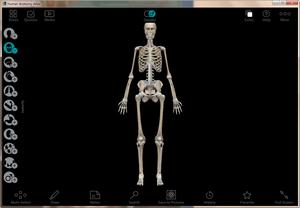Human Anatomy Atlas免费版下载