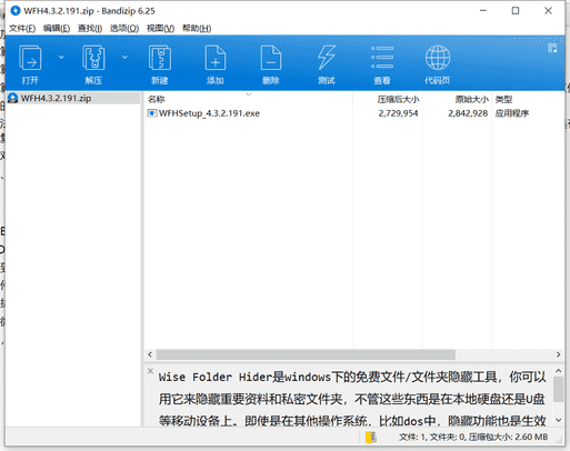 Wise Folder Hider文件夹加密软件下载 v4.3.2.191中文免费版