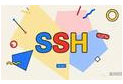 ESXi主机开启ssh方法一