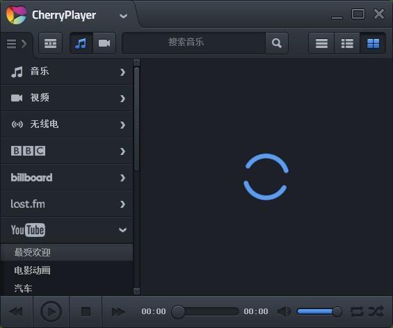 CherryPlayer破解版下载