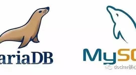 三分钟部署MariaDB数据库