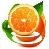 橙子视频安卓版下载 v2.1