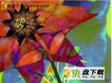 ArtRage Studio下载