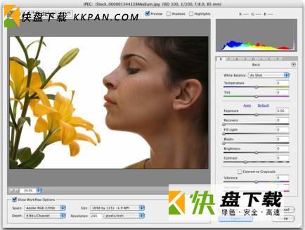 Adobe Camera Raw中文破解版下载 v11
