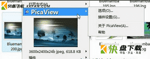picaview下载