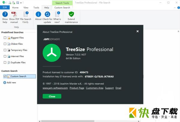 TreeSize Pro下载