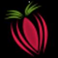 Strawberry下载