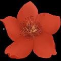 小红花主播音效软件