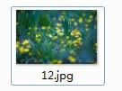 文件图片生成器下载